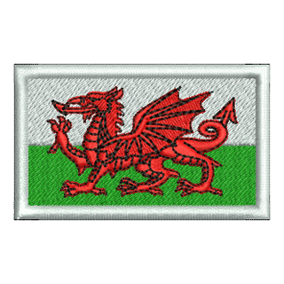 Wales Flag 11488